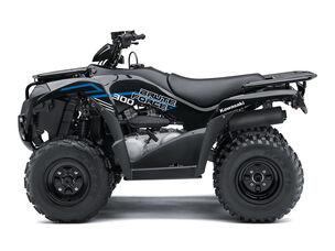 Kawasaki 2021 Bruteforce 300